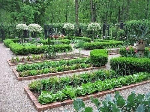 Лайфхаки для садоводов и огородников. 36 и 1 хитрый совет для садоводов и огородников.