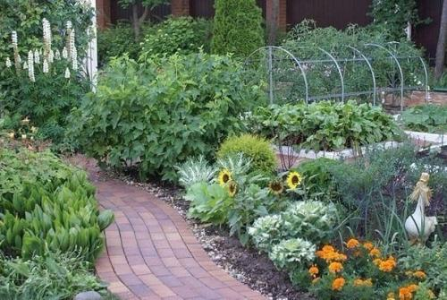 Лайфхаки для дачи. 37 хитростей для садоводов и огородников.