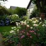 13 идей для вашего сада, которые можно воплотить одной покупкой.