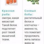 Идеальные продукты для тех, кто занимается в спортом.