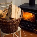 Какими дровами лучше всего топить камин и печь.