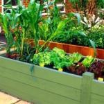 Красивый огород своими руками - как сделать красивые грядки!