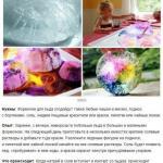 8 волшебных опытов, которые заставят детей ахнуть?