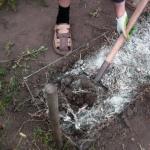 Раскисление почвы на огороде.