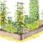 Преимущества поднятых грядок для огорода.