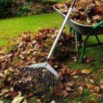 Без огня: забудьте о кострах на садовых участках.