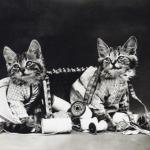 Снимки, сделанные около века назад.