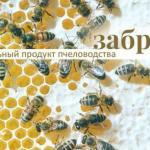 Забрус от пчёлки!