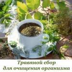 Травяной сбор для очищения организма.