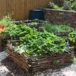 Хитрости садоводов и огородников.