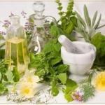 Противопаразитарные растения.  Питание человека оказывает большое влияние на здоровье.