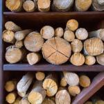 О дровах.  Особенности некоторых типов дров.