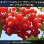 Сохрани себе?   Калина - одна из самых полезных ягод в природе.