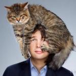 Почему кошка на больное место человека ложится?